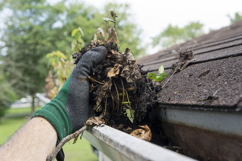 Cleaning gutters during the summer time on a older home.